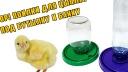 Обзор поилки для цыплят под банку и бутылку.